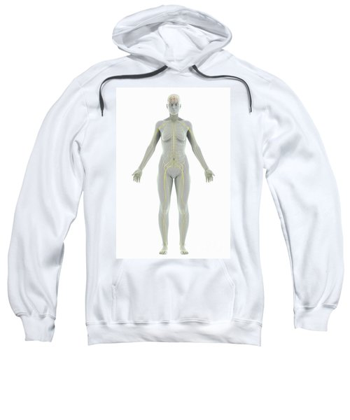 The Nervous System Female Sweatshirt