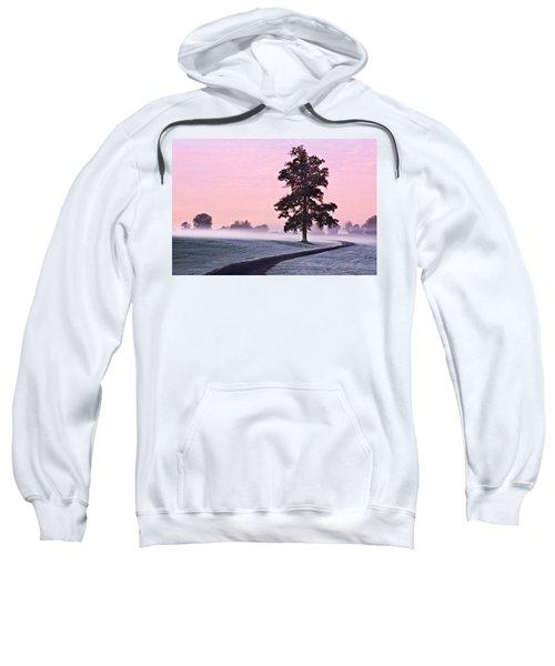 Tree At Dawn / Maynooth Sweatshirt