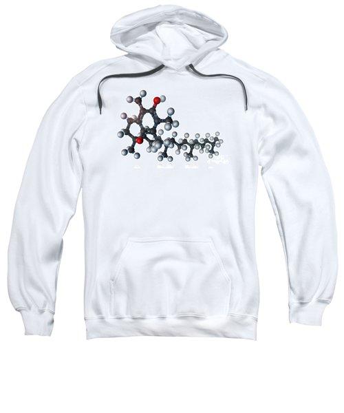 Vitamin E, Molecular Model Sweatshirt