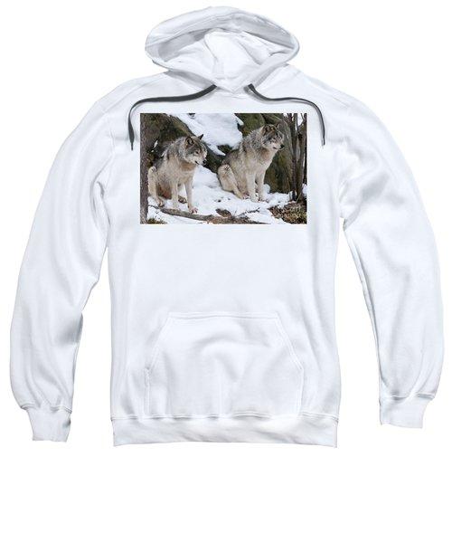 Timber Wolves Sweatshirt