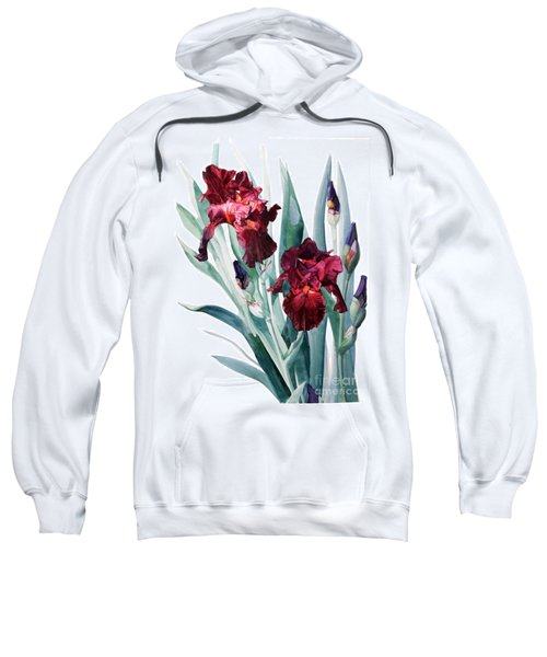 Dark Red Tall Bearded Iris Donatello Sweatshirt
