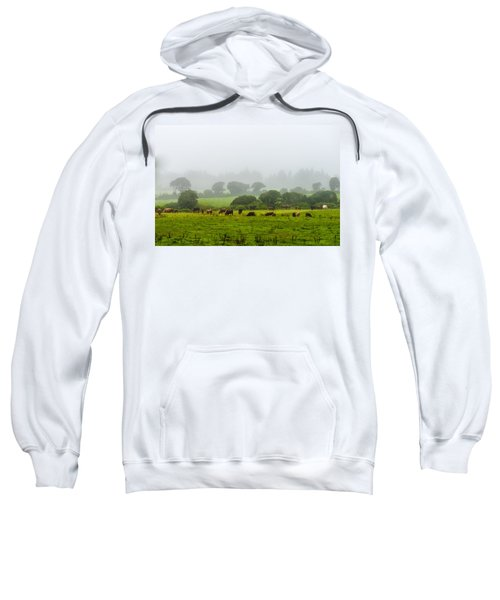 Sweatshirt featuring the photograph Cows At Rest by Joseph Amaral