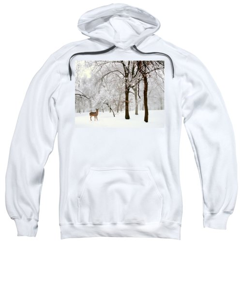 Winter's Breath Sweatshirt