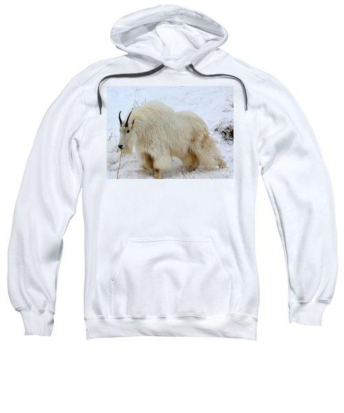 A Beautiful Woman Sweatshirt