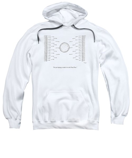 A Number Of Sperms Approach An Egg In The Shape Sweatshirt