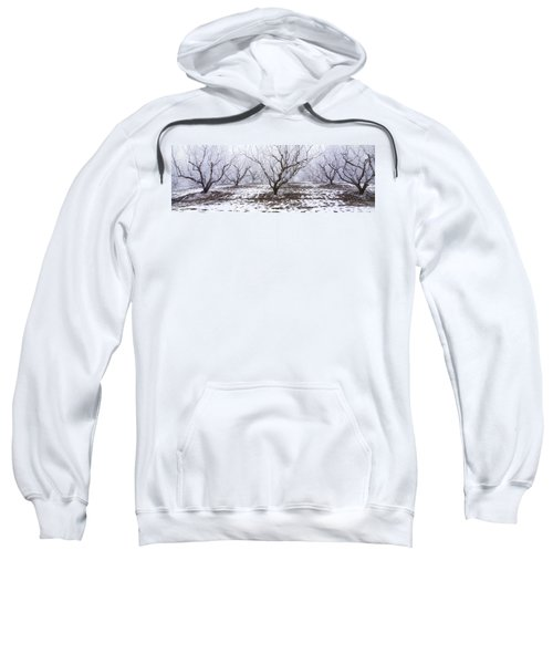 Agriculture - Apple Orchard Covered Sweatshirt