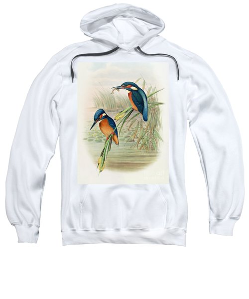 Alcedo Ispida Plate From The Birds Of Great Britain By John Gould Sweatshirt by John Gould William Hart