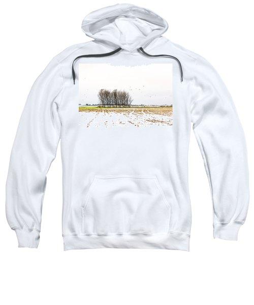 Almost Winter Sweatshirt