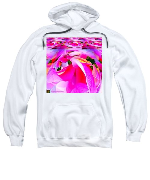 And Now For Some Brights Sweatshirt