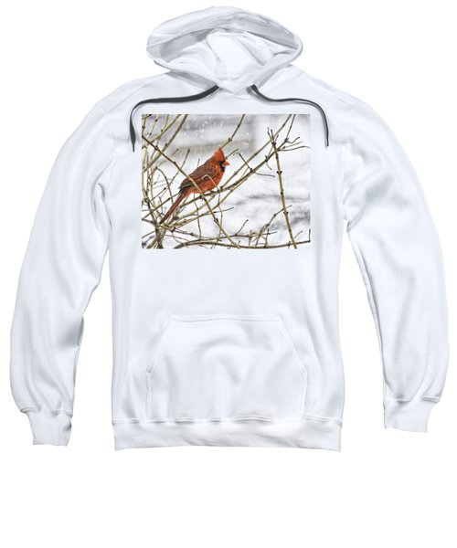 Another Snowy Day Sweatshirt
