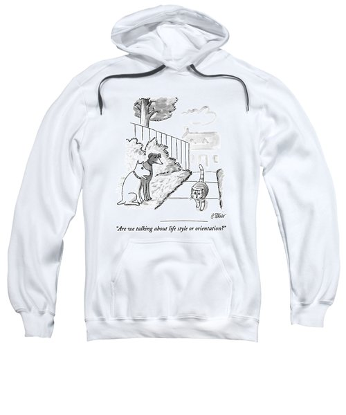 Are We Talking About Life Style Or Orientation? Sweatshirt