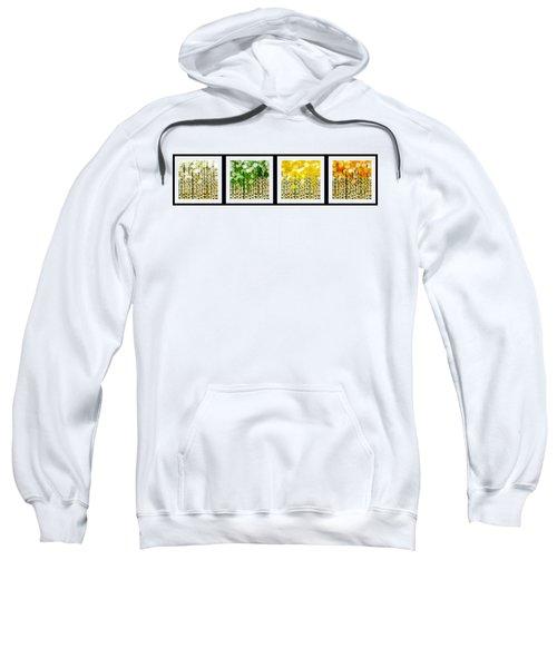 Aspen Colorado Abstract Horizontal 4 In 1 Collection Sweatshirt