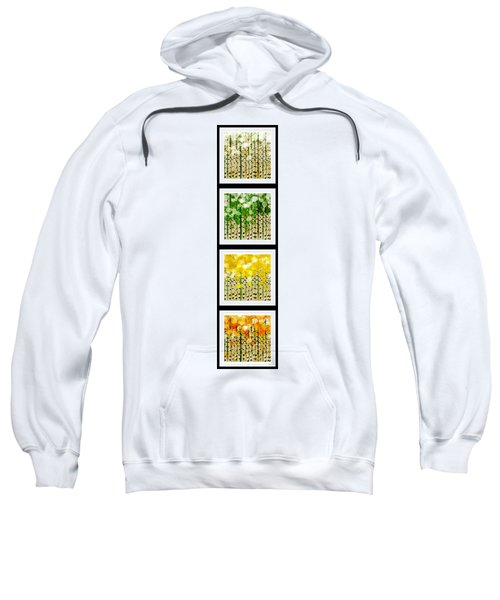 Aspen Colorado Abstract Vertical 4 In 1 Collection Sweatshirt