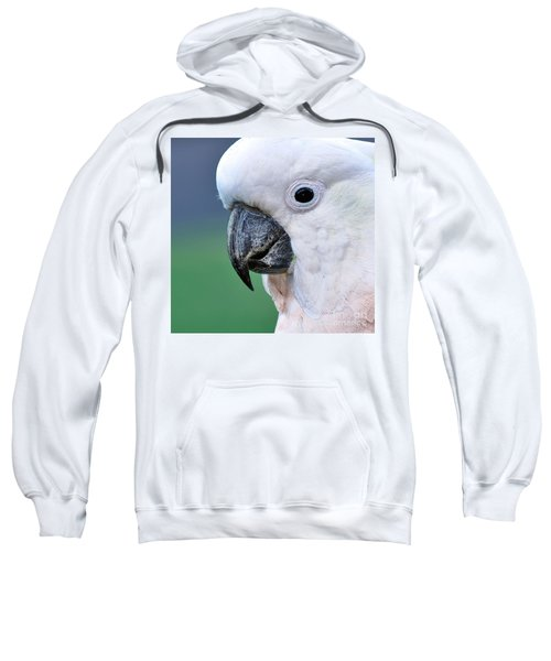 Australian Birds - Cockatoo Up Close Sweatshirt by Kaye Menner