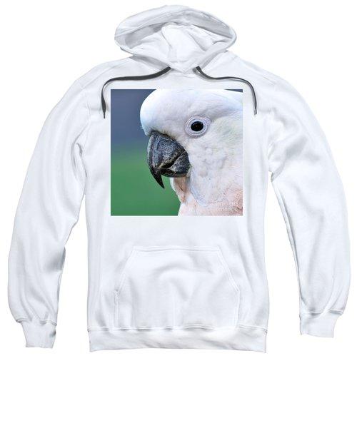 Australian Birds - Cockatoo Up Close Sweatshirt