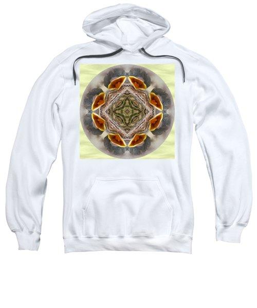 Baby Bird Kaleidoscope Sweatshirt