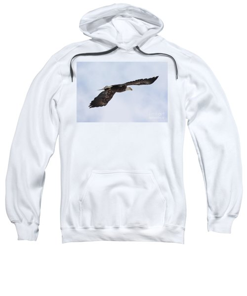 Bald Eagle Soaring Sweatshirt