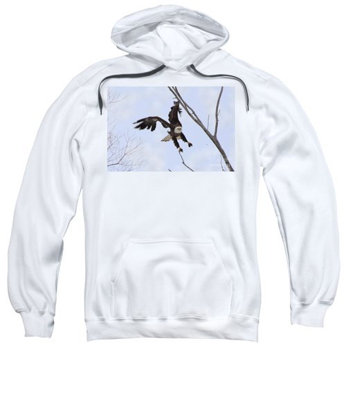 Bald Eagle With Wings Up And Muddy Feet Sweatshirt
