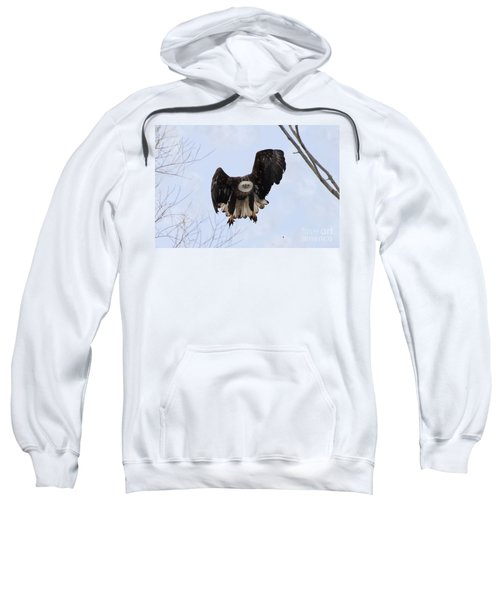 Bald Eagle With Wings Up And Partially Out Sweatshirt