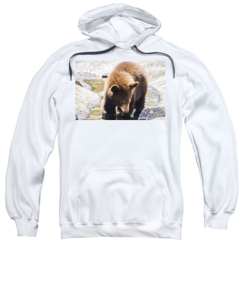 Bear Cub Sweatshirt