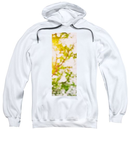 Beneath A Tree  14 5194  Diptych  Set 2 Of 2 Sweatshirt