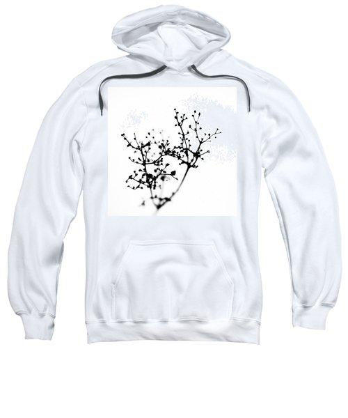 Biochemistry Of Winter 2 Sweatshirt