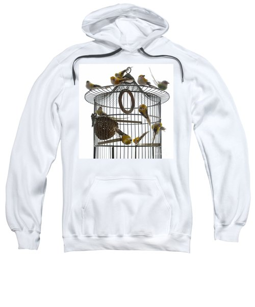 Birds Inside And Outside A Cage Sweatshirt