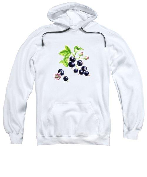 Blackcurrant Botanical Study Sweatshirt by Irina Sztukowski