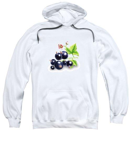 Blackcurrant Still Life Sweatshirt by Irina Sztukowski