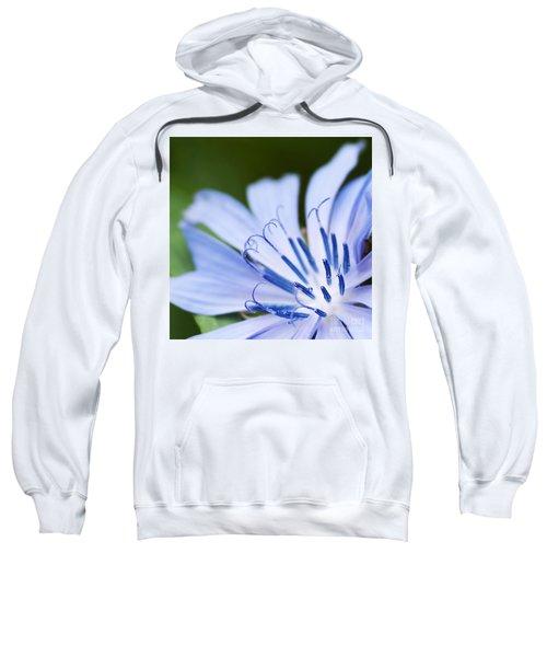 Blue Poetry.. Sweatshirt