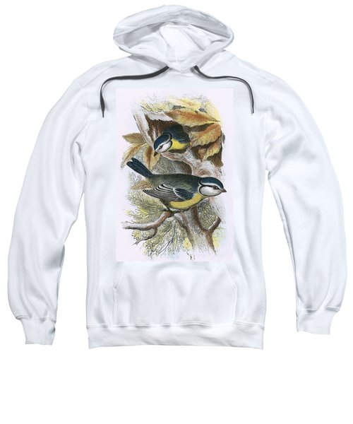 Blue Titmouse Sweatshirt