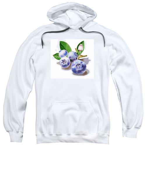 Artz Vitamins The Blueberries Sweatshirt