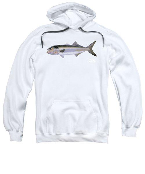 Bluefish Sweatshirt