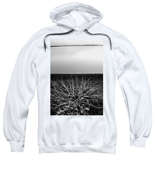 Branching Out Sweatshirt