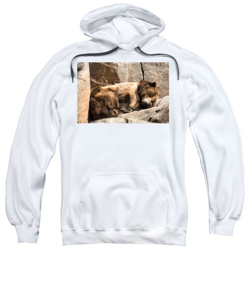 Brown Bear Asleep Again Sweatshirt