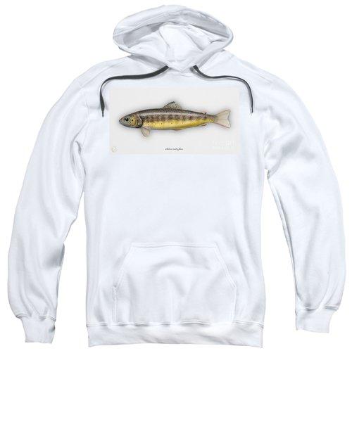 Brown Trout - Salmo Trutta Morpha Fario - Salmo Trutta Fario - Game Fish - Flyfishing Sweatshirt