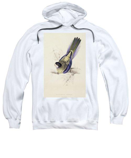 Browns Parakeet Sweatshirt