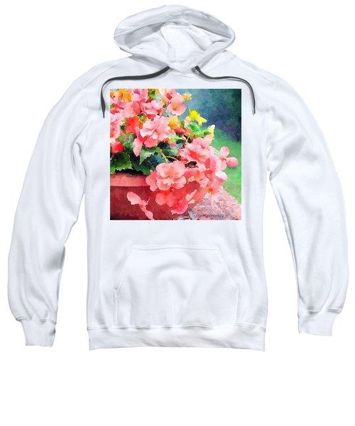 Bucket O Begonias Sweatshirt