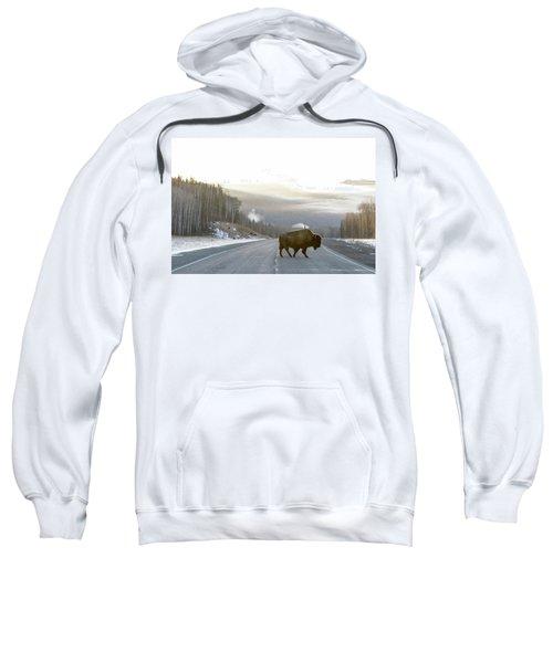 Buffalo On The Alaska Highway Sweatshirt