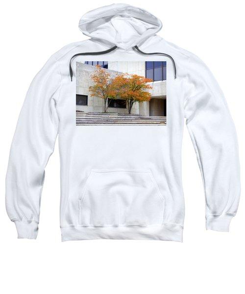 Burst Of Color Sweatshirt