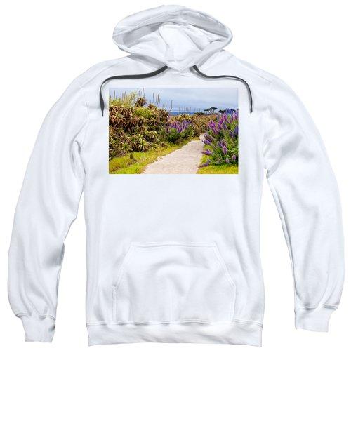 California Coastline Path Sweatshirt