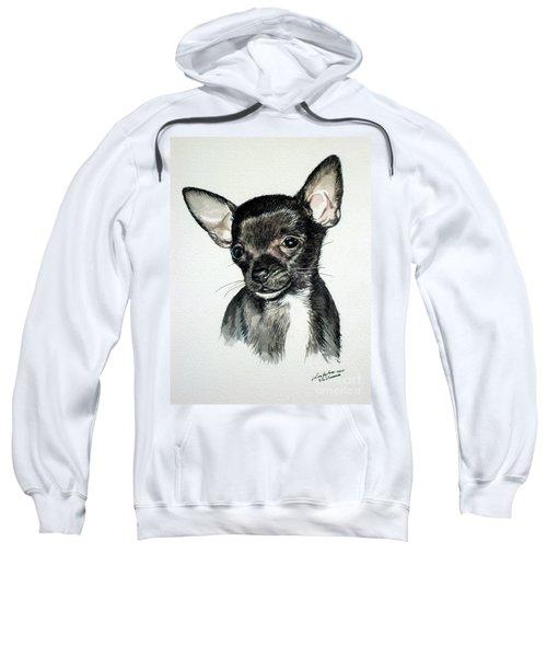 Chihuahua Black 2 Sweatshirt