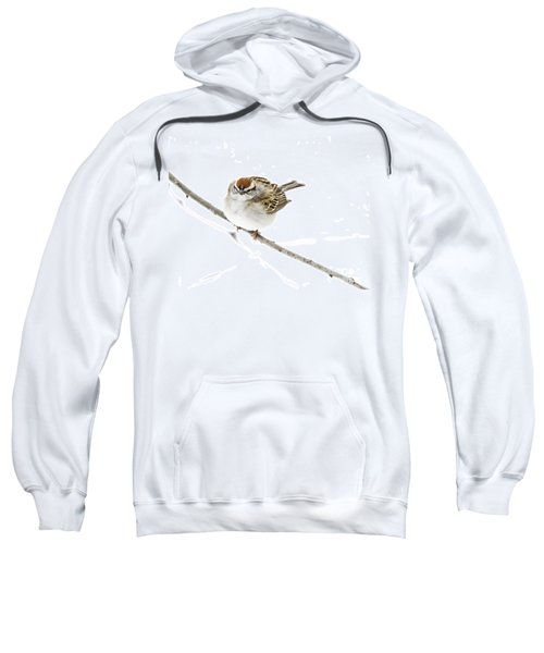 Chip Sweatshirt