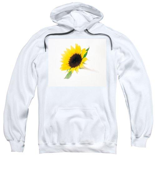 Close Up Of Sunflower Sweatshirt