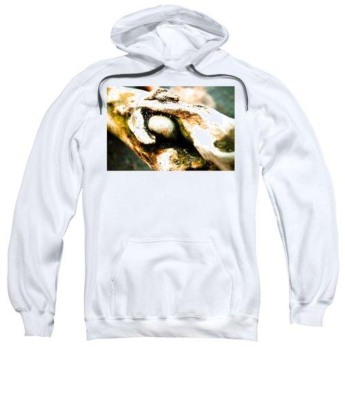 Cold Stare Sweatshirt