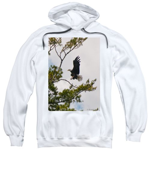 Coming In For A Landing Sweatshirt