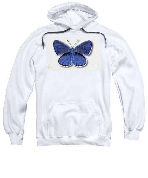 Common Blue Butterfly - Polyommatus Icarus Butterfly Naturalistic Painting - Nettersheim Eifel Sweatshirt