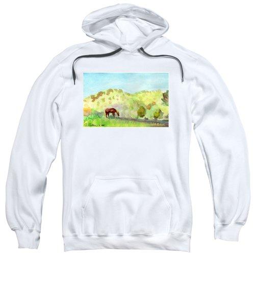 Cool Drink Sweatshirt