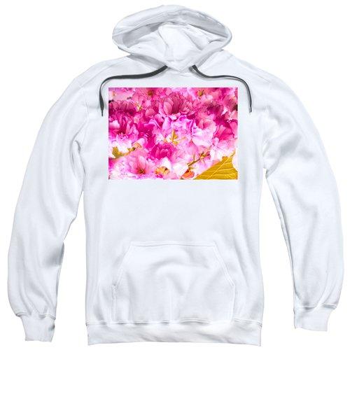Crabapple Impressions 2 Sweatshirt