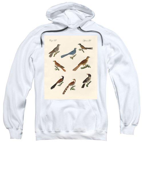 Cuckoos From Various Countries Sweatshirt